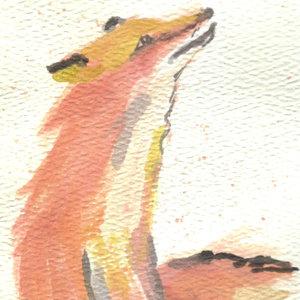 fox05_328311.jpg