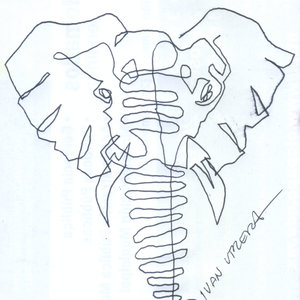 elefante02_328404.jpg
