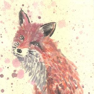 fox01_328377.jpg
