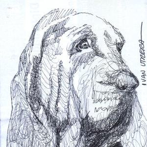 dog08_328943.jpg