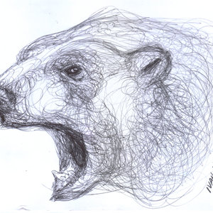 bear02_329144.jpg