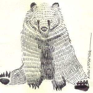 bear03_329145.jpg