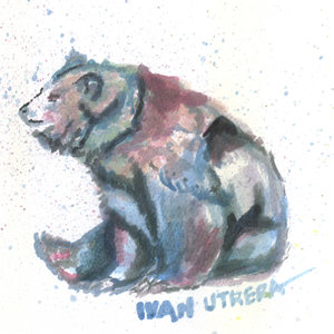 bear05_329258.jpg