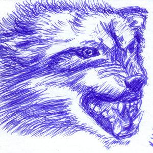wolf_329204.jpg