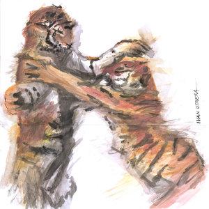 tiger16_329826.jpg