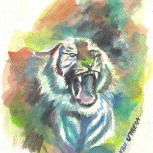 tiger09_330485.jpg
