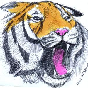 tiger06_330803.jpg