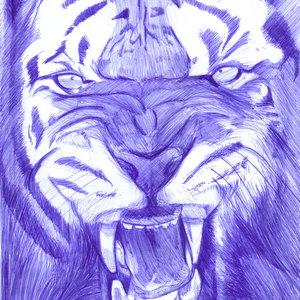tiger03_331253.jpg
