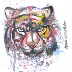 tiger04_331222.jpg