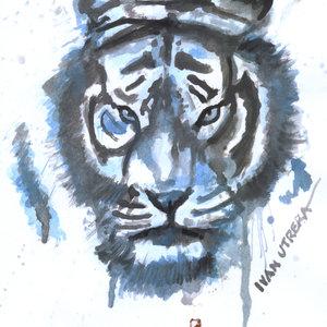 tiger01_331379.jpg