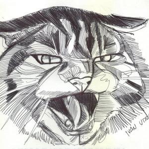 cat03_331585.jpg