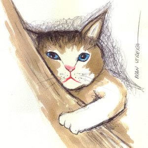 cat09_332055.jpg