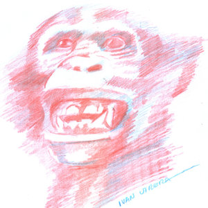 chimpace_332192.jpg