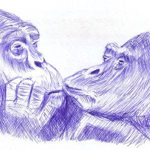 chimpaces_332345.jpg
