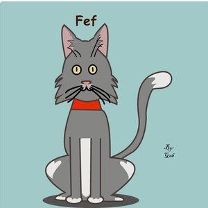 Fef_332611.jpg