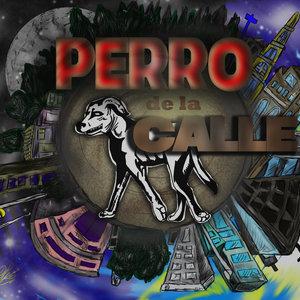 perro_de_la_calle._336453.jpg