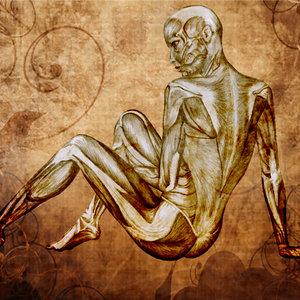 de_humanis_corporis_fabrica_Y_FONDO_338063.jpg