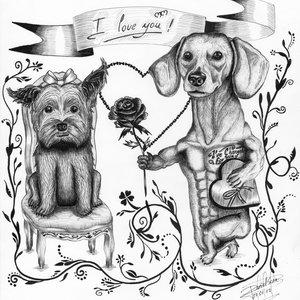 Amor de Perros DS