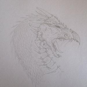 dragón de la película