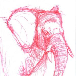 elephant_339301.jpg