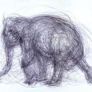elephant02_339429.jpg
