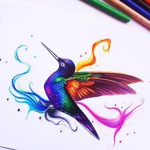 colibrí