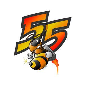Abeja 55