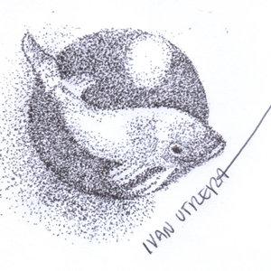fish05_339864.jpg
