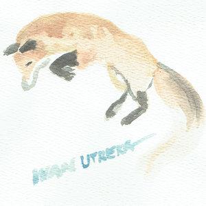 fox02_340362.jpg
