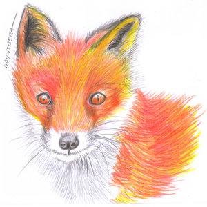 fox04_340366.jpg