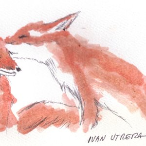 fox07_340449.jpg