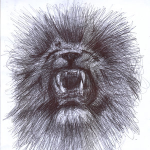 lion05_340450.jpg