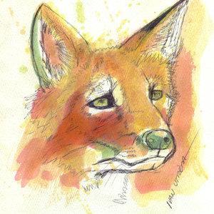 fox08_340551.jpg