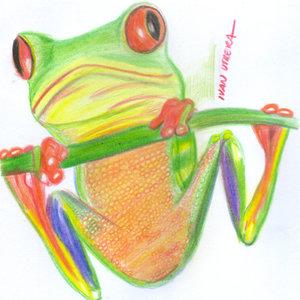 frog02_340705.jpg