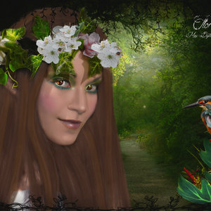 Flora_340883.jpg