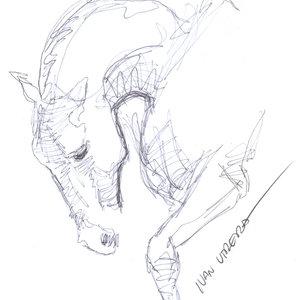horse01_341040.jpg