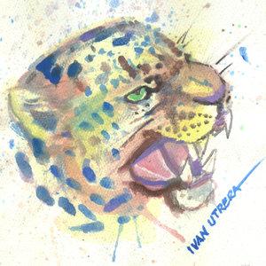 leopardo01_341348.jpg