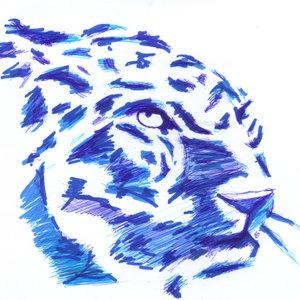 leopardo02_341306.jpg