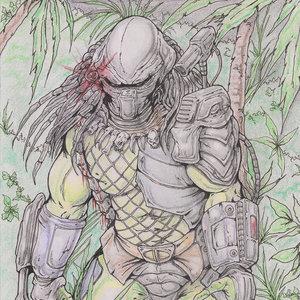 Predator_01C_341554.jpg