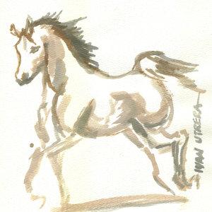 horse07_341542.jpg