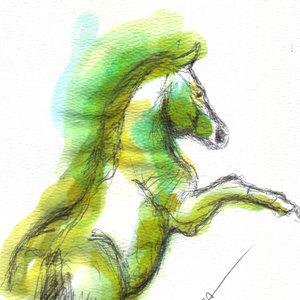 horse08_341585.jpg
