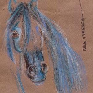 horse10_341596.jpg