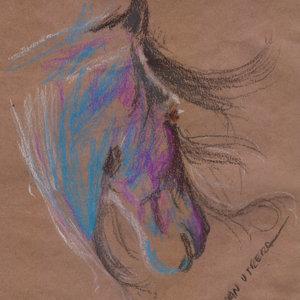 horse9_341588.jpg