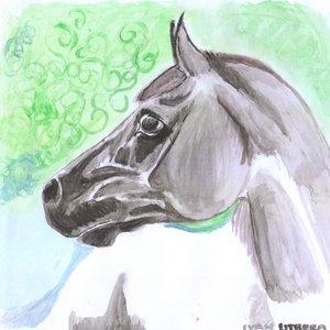 horse0_307101.jpg