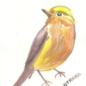 bird0_307296.jpg