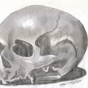 skull0_307788.jpg