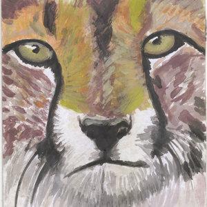 cheetah01_308367.jpg