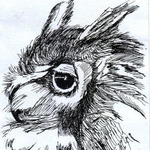 owl08_308370.jpg