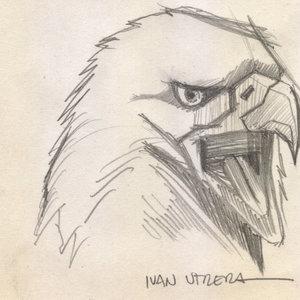 eagle_308427.jpg
