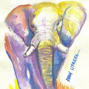 elefante_308767.jpg